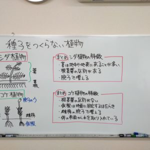 "<span class=""title"">【授業動画】種子をつくらない植物</span>"